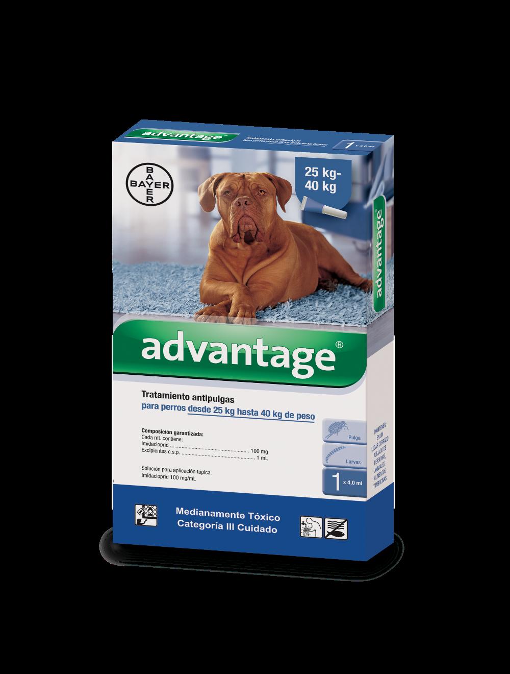 Antipulgas Advantage Pipeta para perros - Ciudaddemascotas.com