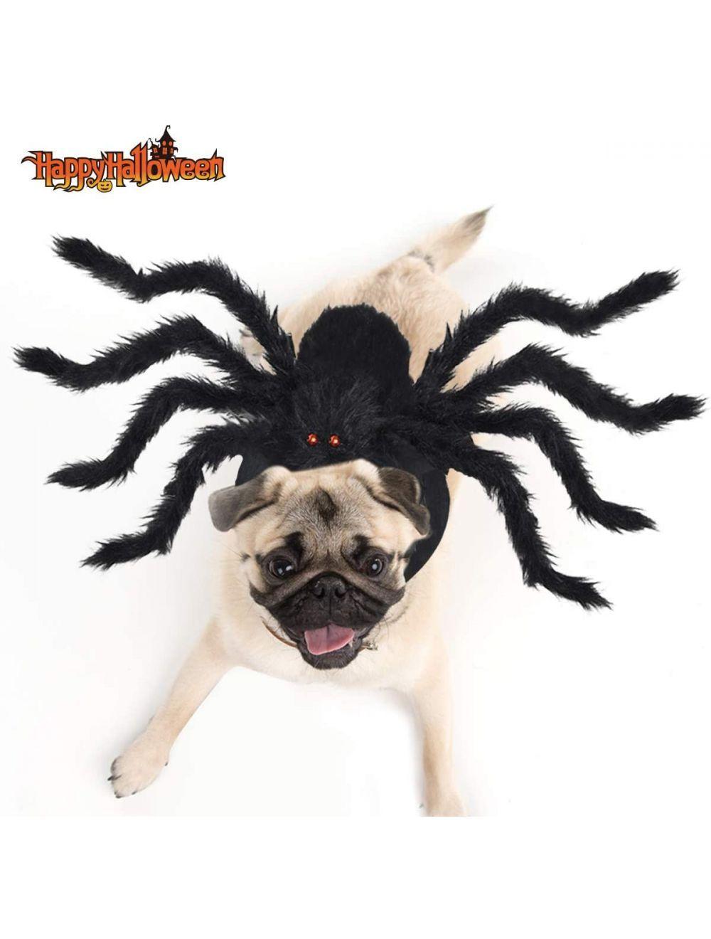 Disfraz Para Mascotas De Araña Talla L - Ciudaddemascotas.com