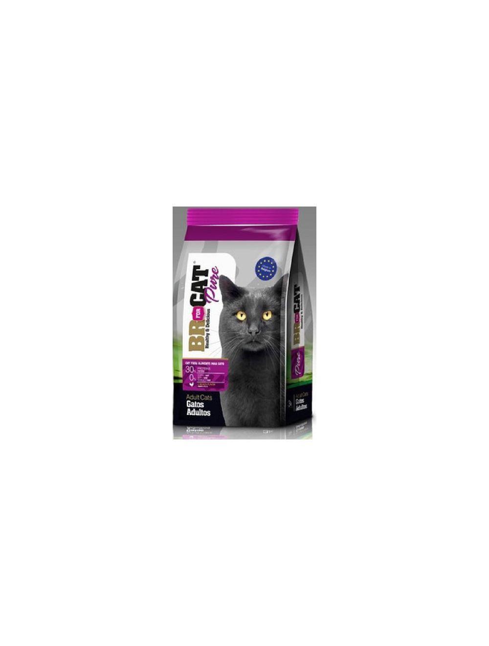 Br For Cat Gato Adulto - Ciudaddemascotas.com