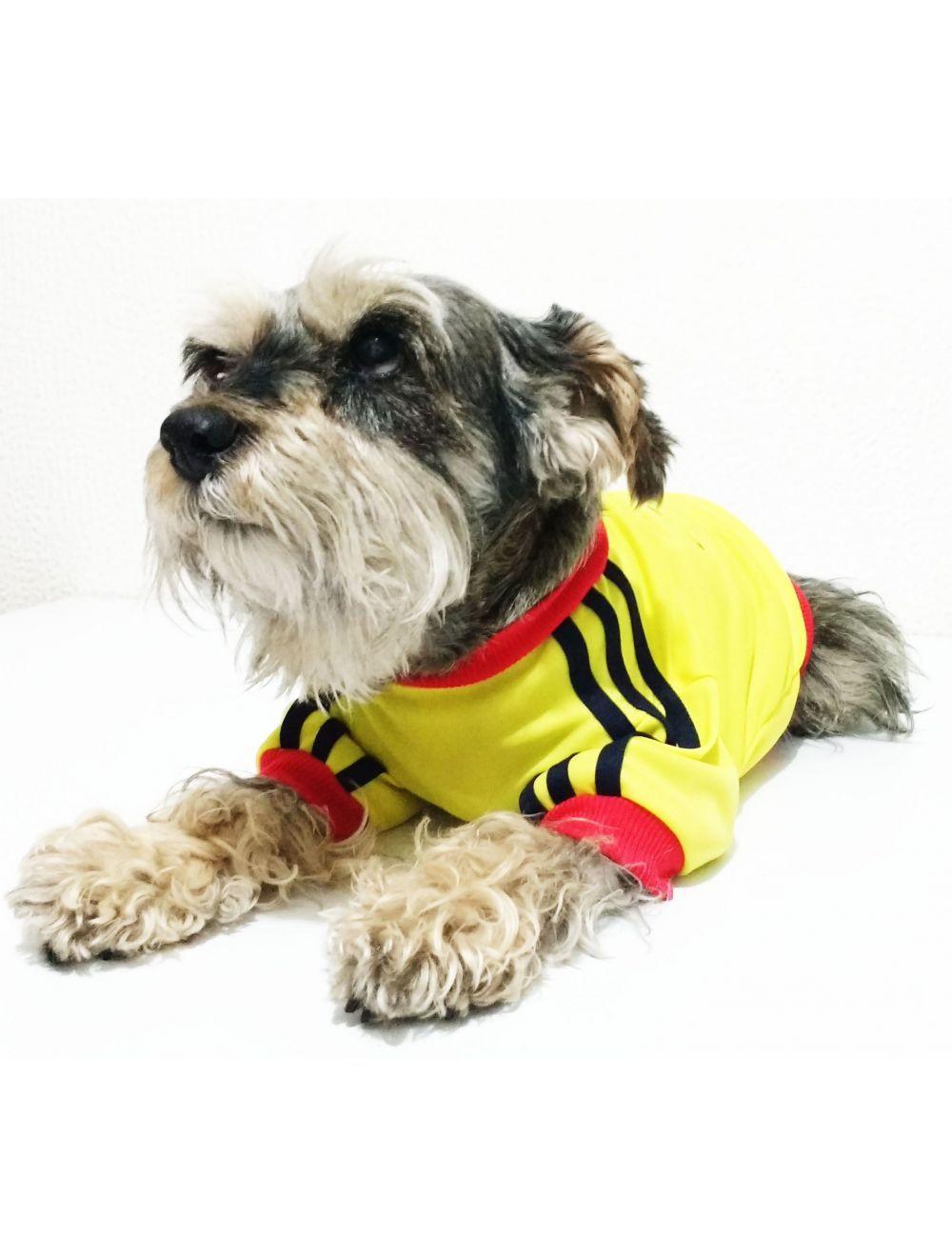 Camiseta Selección Colombia Talla XL Obsequio