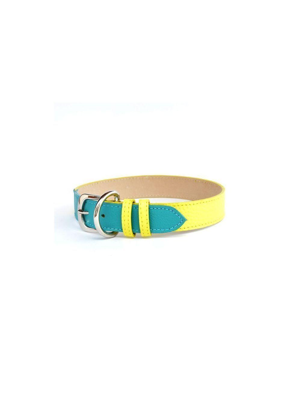 Collar azul y amarillo talla 4 - PRSR