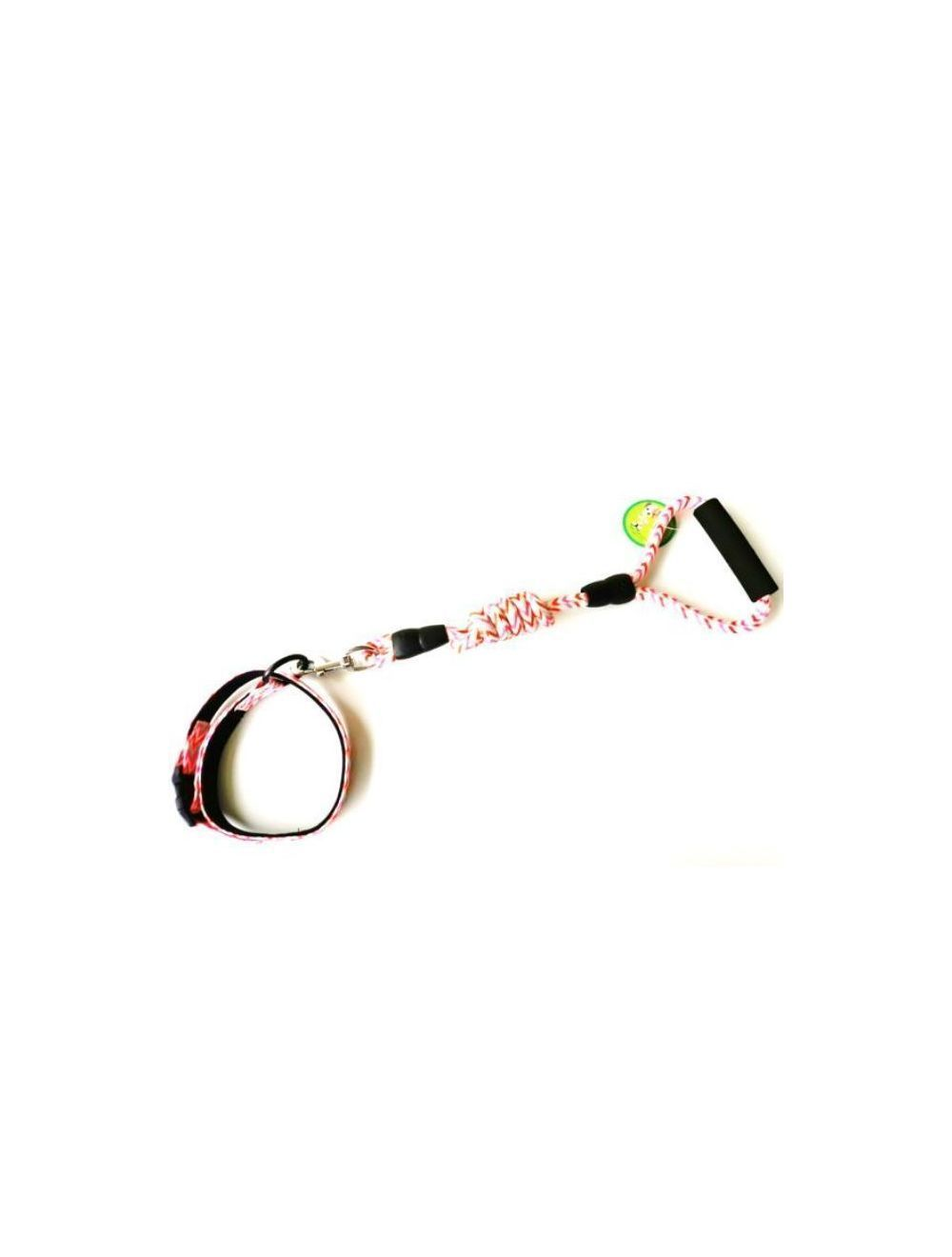 Lazo con collar para tus mascotas - ciudaddemascotas.com