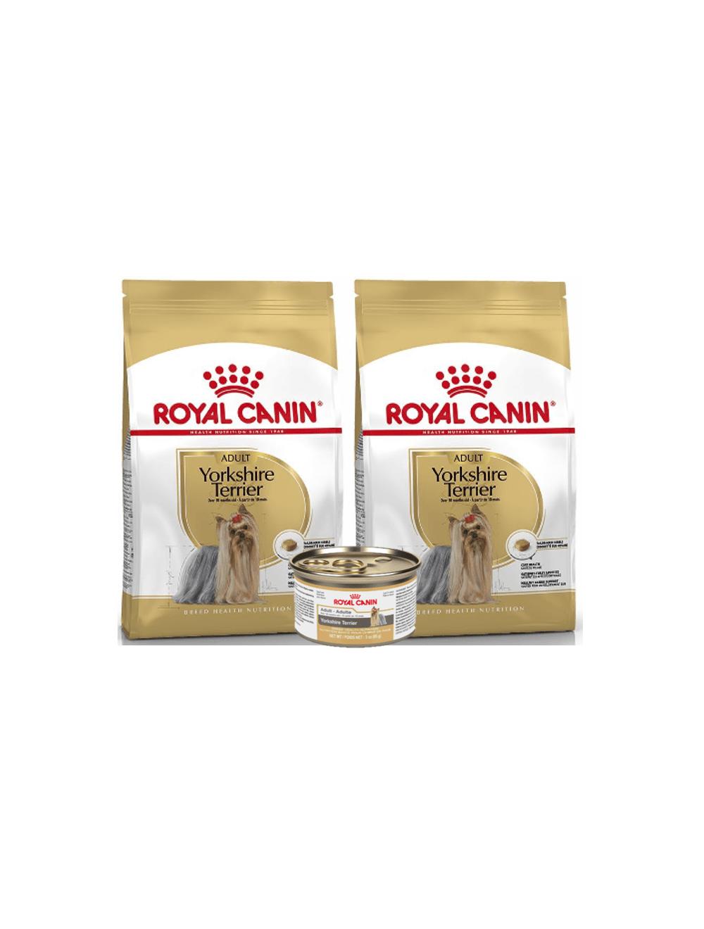 Royal Canin Yorkshire Adulto 1.13 kg Combo x 2 + Lata gratis