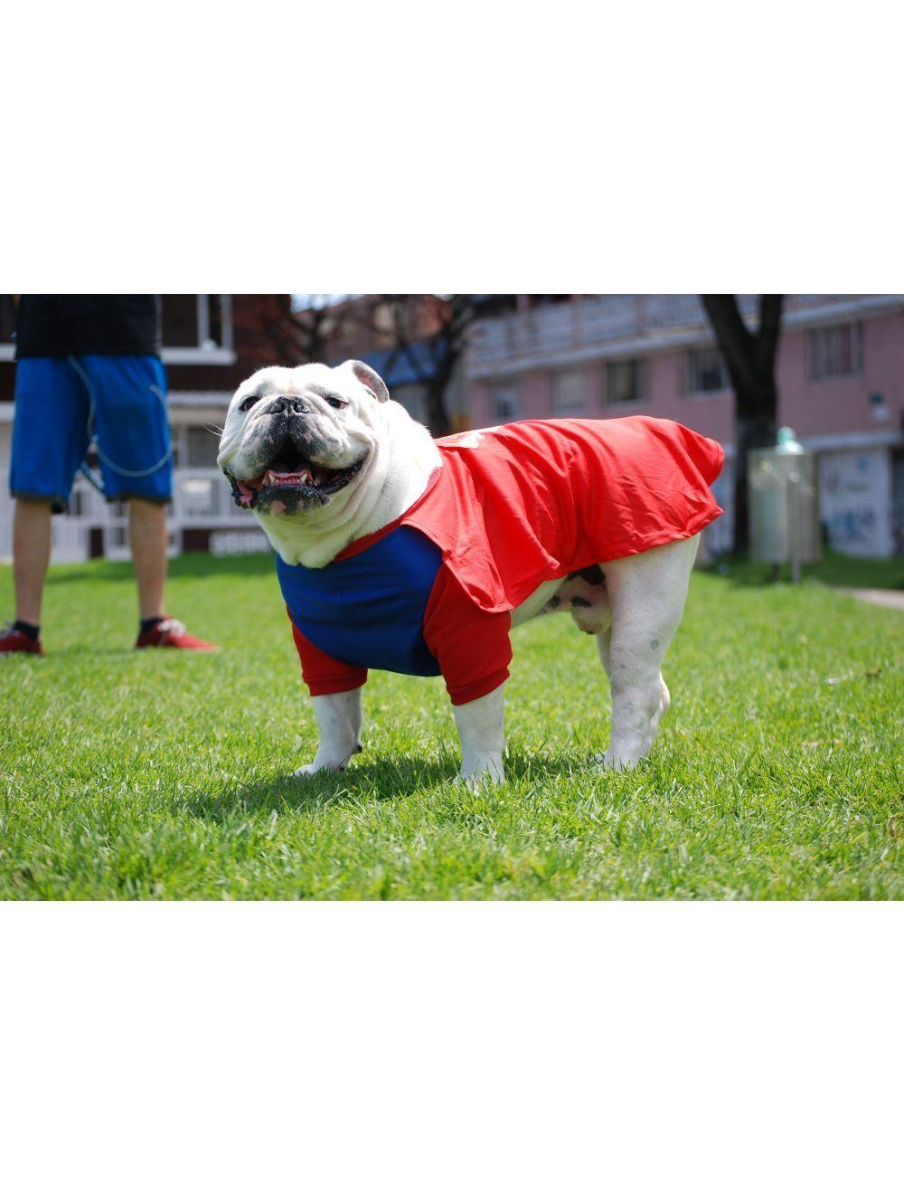 Disfraz Super Man Talla M  - PRSR