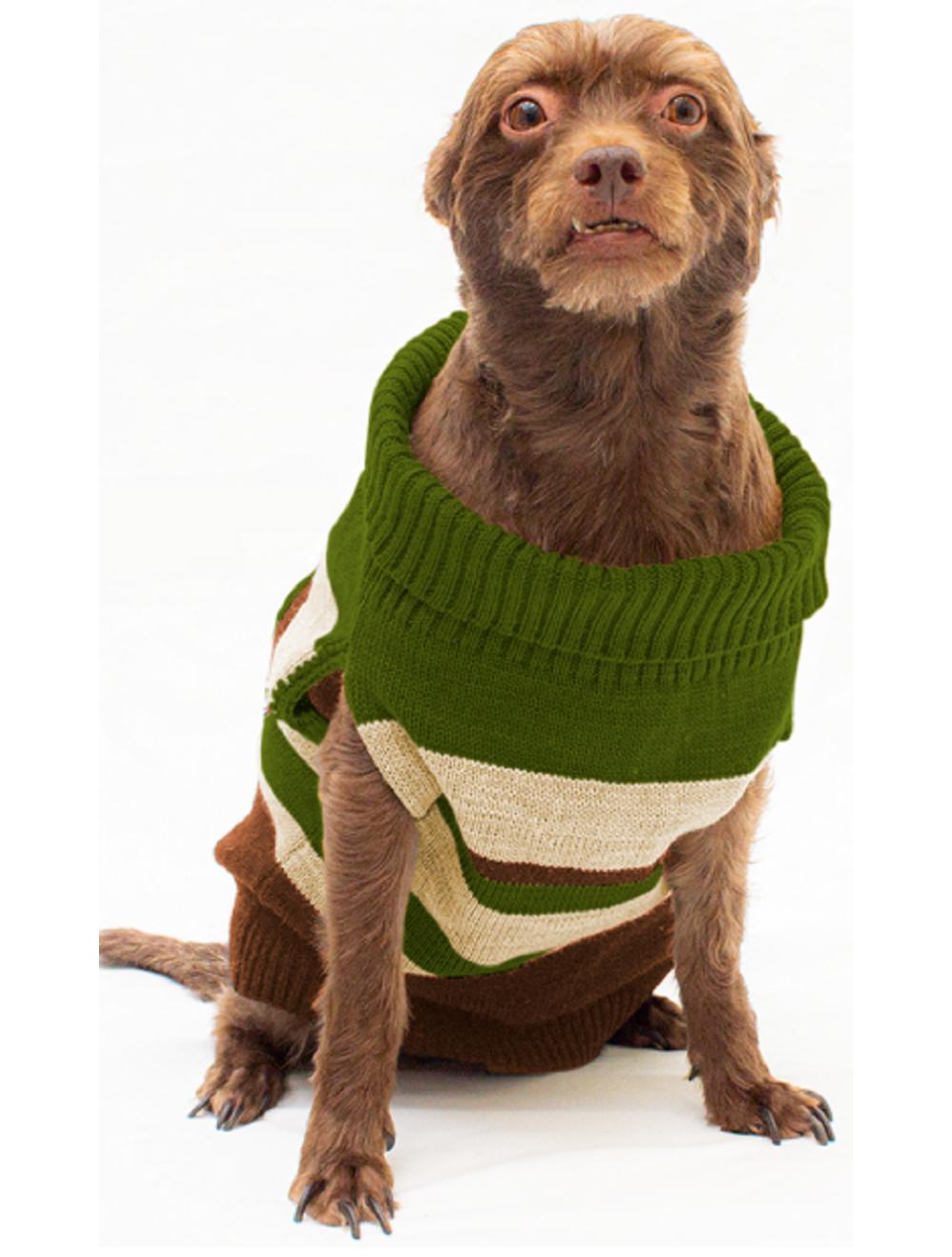Saco Ernie para Perros Verde Talla M - Ciudaddemascotas.com