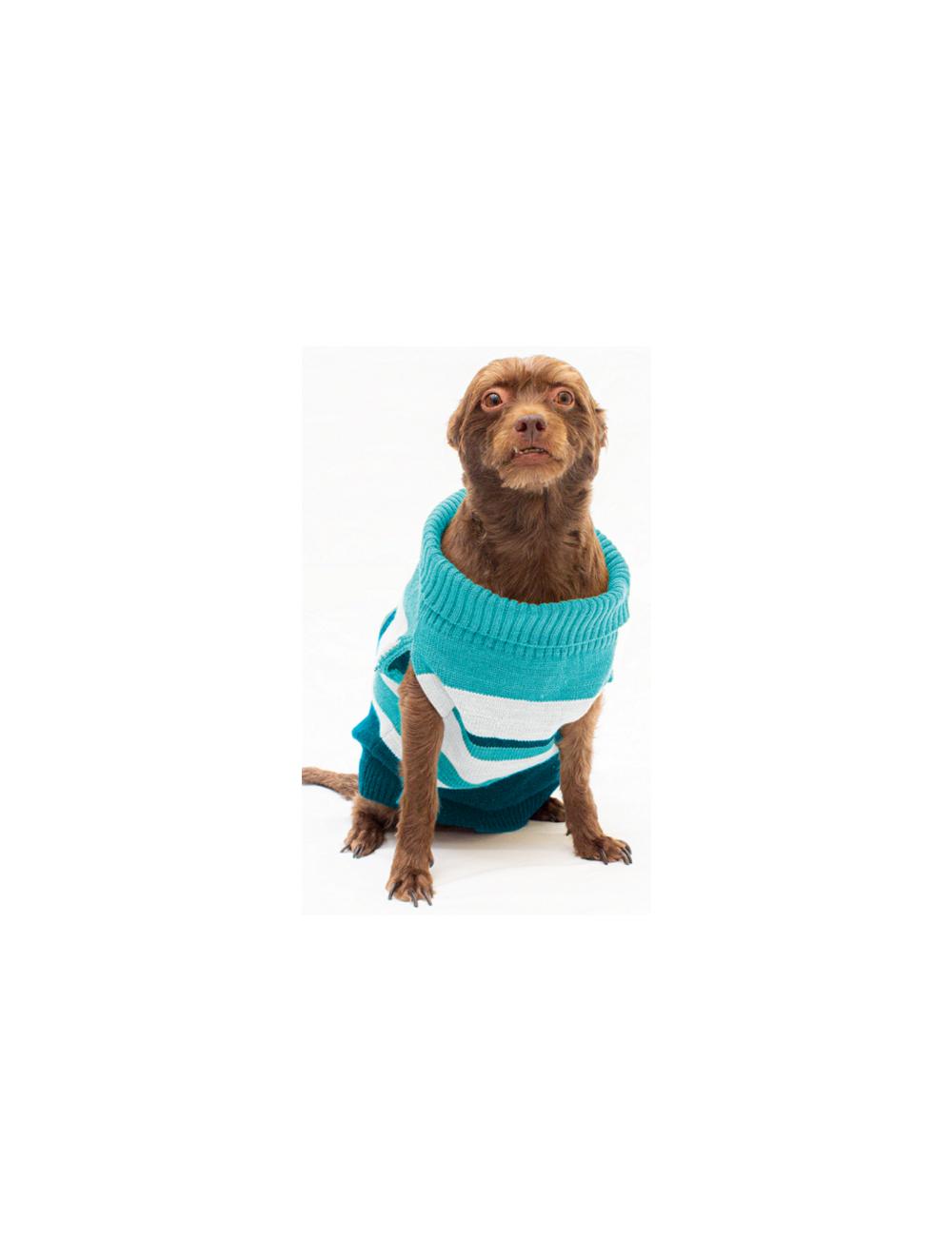 Saco Ernie para Perros Azul talla  XL - Ciudaddemascotas.com