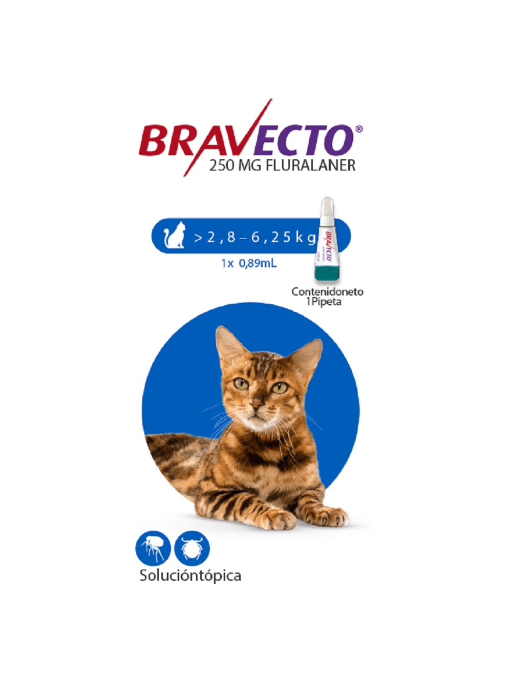 Antipulgas Bravecto Para Gato Spot - ciudaddemascotas.com