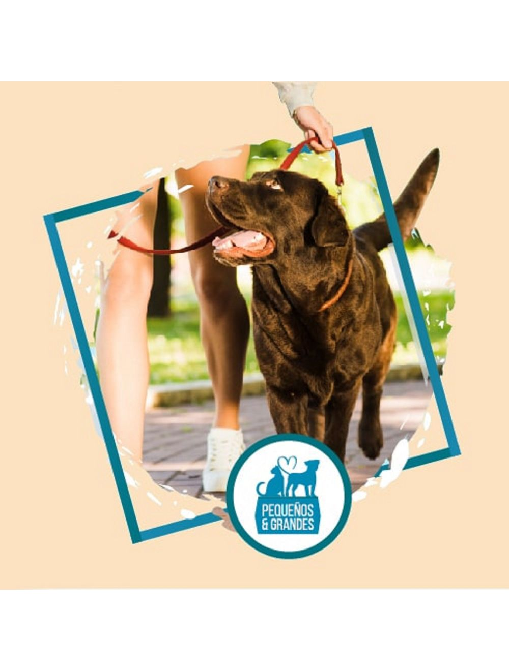 Guardería Canina Familiar-Tipo Hotel–30 días 29 noches