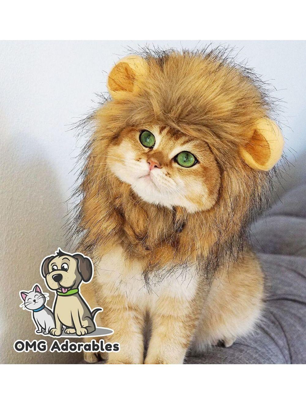 Disfraz Para Mascotas Melena De León Talla L - Ciudaddemascotas.com