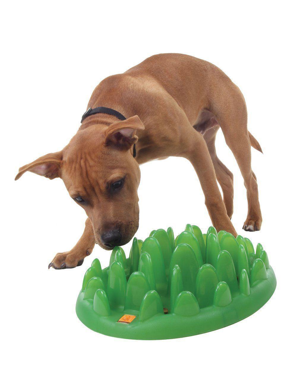 Comedero de alimentación lenta para perros Green slow feeder