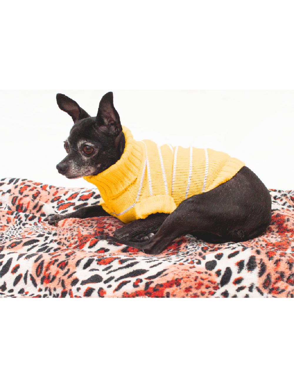 Saco Mandy para Perros Amarillo L