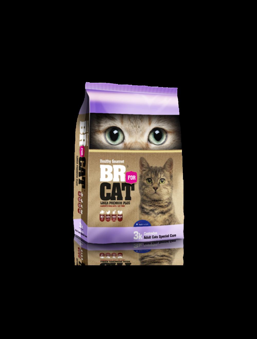 Br For Cat Gato Castrado