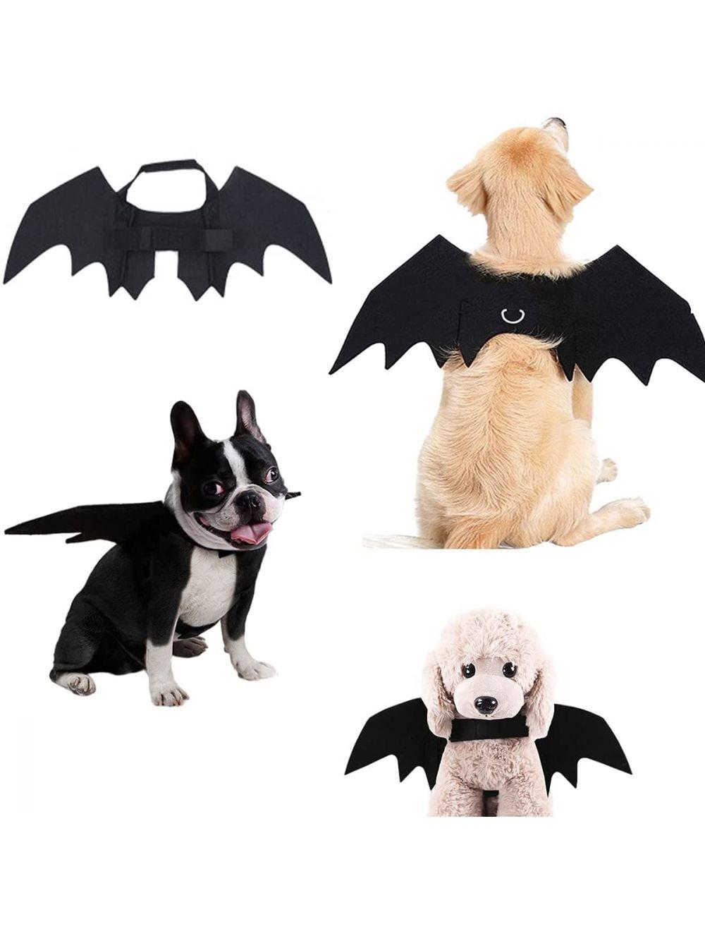 Disfraz Para Mascotas Alas De Murciélago Talla M - Ciudaddemascotas.com
