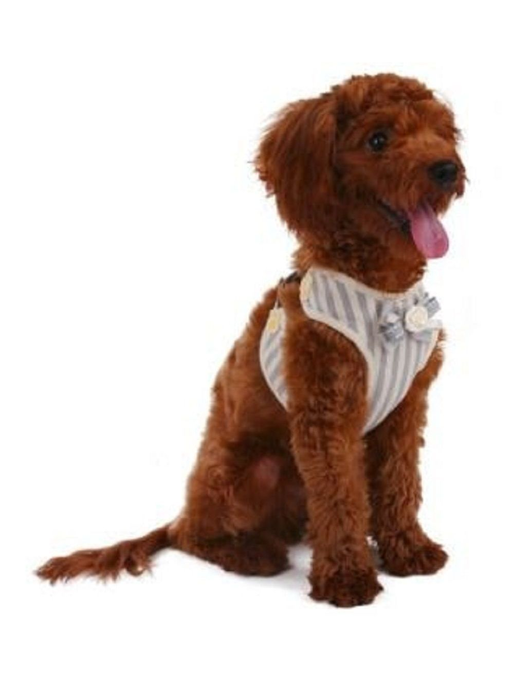 Pechero Especial Ajustable para mascota - Gris S
