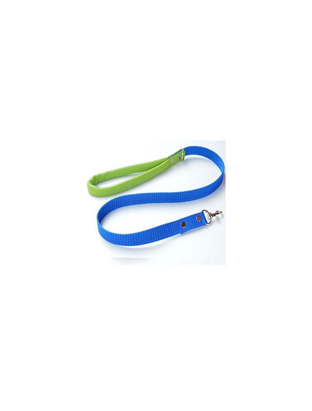 Correa Ciudaddemascotas Azul y Verde Talla L