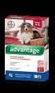 Advantage Pipeta para Perros de más de 10 kg hasta 25 kg