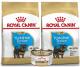 Royal Canin Yorkshire Puppy 1.13 Kg Combo x 2 + Lata gratis
