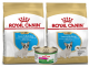 Royal Canin French Bulldog Puppy x1.3 kg Combo x 2 + Lata gratis