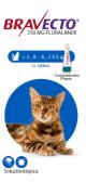 Bravecto Para Gato Spot On 2.8 - 6.2 Kg + Obsequio Gratis