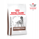 Royal Canin Veterinary Diet Dog Gastro Intestinal Canine 2 Kg