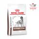 Royal Canin Veterinary Diet Dog Gastro Intestina Canine 10 Kg