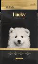Lucky Cachorro Raza Grande