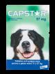 Capstar Para Perros Y Gatos 11 a 57 Kg x 3 tabletas