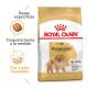 Royal Canin Breed Health Nutrition Pomeranian Adulto 1,5kg