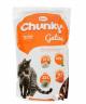 Chunky gatos