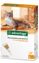 Advantage Pipeta para Gatos hasta 4 kg
