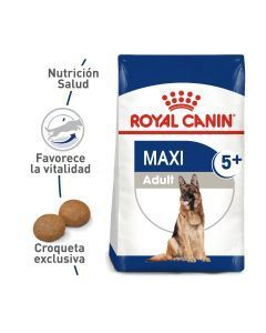 Comida para perro Royal Canin Maxi Adult - Ciudaddemascotas