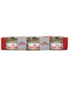 Comida para Perros Royal Canin Yorkshire-Ciudaddemascotas.com