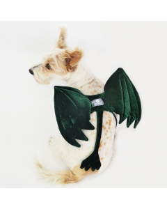 Disfraz Para Mascotas De Alas De Dragón- Ciudaddemascotas.com