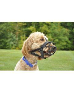 Coastal perro bozal basket  talla 3 - Ciudaddemascotas.com