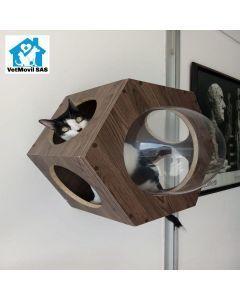 Cama Entretenimiento para Gatos