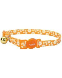 Coastal collar gato fashion flores daisy naranja