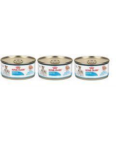 Royal Canin dog lata starter mousse tripack 165 gr-Ciudaddemascotas.com