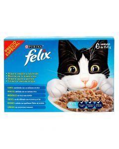 Comida Felix en Lata Pague 5 Lleve 6 - ciudaddemascotas.com