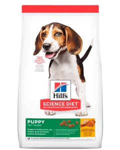 Hill's Cachorro Healthy Development Original