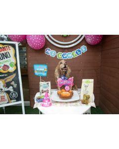 Kit de Cumpleaños para Perros - Fucsia - ciudaddemascotas.com
