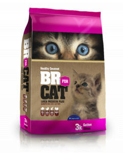 Br For Cat Gatitos