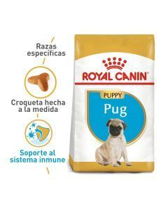 Royal Canin Breed Health Nutrition Pug Puppy x 1,13Kg