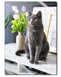 Rompecabezas en Acrílico de Gato Azul Ruso - Ciudaddemascotas