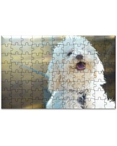 Rompecabezas MDF French Poodle Adulto