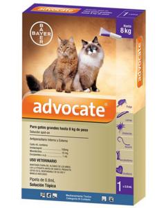 Advocate Pipeta para Gatos Grandes hasta 8 kg de peso