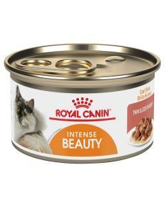 Royal Canin Cat Lata Intense Beauty Wet x 85g