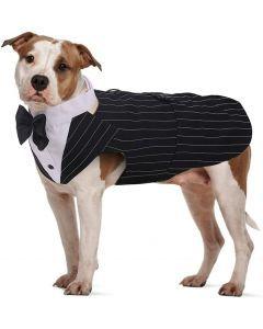 Disfraz Para Mascotas Traje De Esmoquin Talla M  - Ciudaddemascotas.com