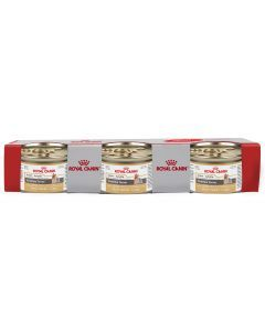 Royal Canin Dog Lata Yorkshire Tripack x 85 gr