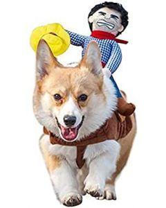 Disfraz Para Mascotas De Vaquero Jinete Talla L - Ciudaddemascotas.com
