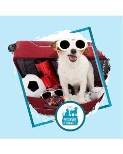 Tramitación para Viajes de Mascotas